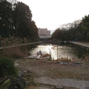 芦田湖水光園に行ってきた。十八番をパクリました チャカ○○