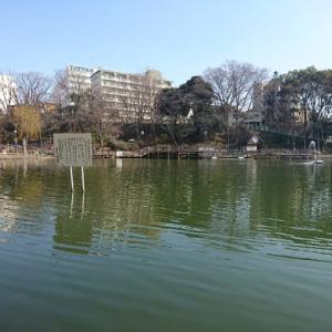 板橋区見次公園に行ってきた。段底ですか。