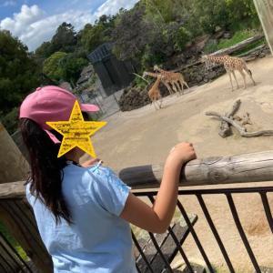 オークランド動物園へGo!