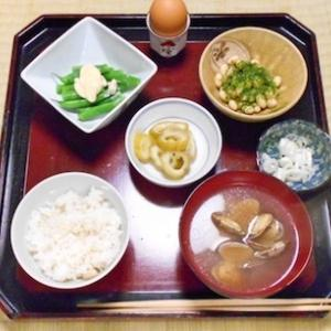 外食の日々
