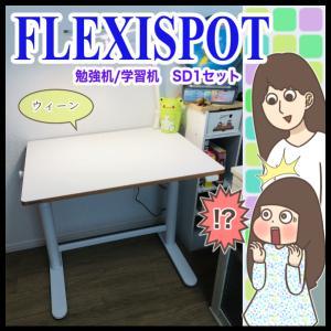 【モニター】目から鱗だった機能的デスク【FLEXISPOT】