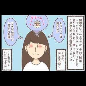 ピッピコロ6【完】