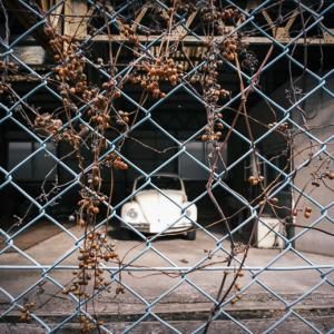 廃工場に佇む白いカブトムシ
