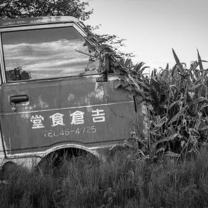 早秋の夏草と闘う赤錆のハイゼット