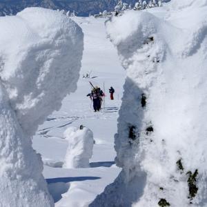 冬には珍しく快晴の天気!