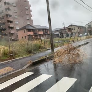 台風過ぎて…