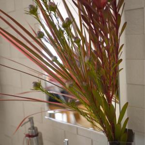 サロンレッスン♪レストルームの生花とミニミニ鉄瓶