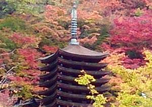紅葉に染まる談山神社