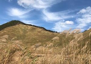 曽爾(そに)高原のススキ