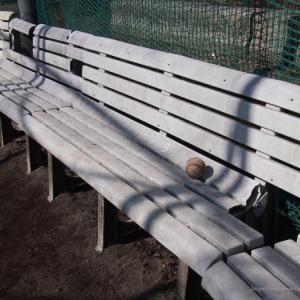 野球少年と挨拶