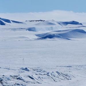 太古の南極には羽毛恐竜がいた!初の証拠を発見!