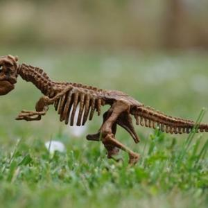 """「史上最強レベル」の新種恐竜を発見!""""ルシタニアの狩人""""の異名を持つ"""