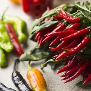 """暑い時に""""辛いもの""""を食べると涼しくなるは本当、「クーラー遺伝子」が活性化"""