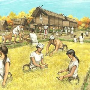長野で弥生時代の鳥装シャーマンの絵画土器が出土!東日本では初