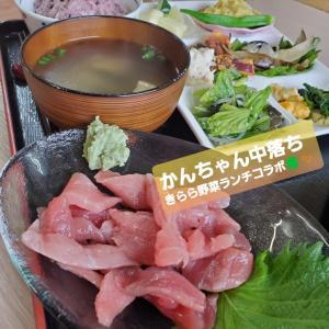 夢のコラボ~かんちゃんの中落ち×きららの野菜たっぷりランチ~