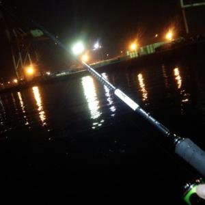 台風前の霞埠頭でカニ掬いとマゴチ