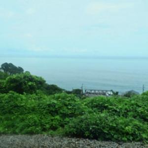 2021年6月、梅雨の合間の熱海旅行(8)小田原漁港の「さかな食堂大原」で、1時間半待ちのミックスフライ定食。