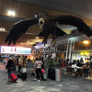 国際線・・・?ウェリントン空港にて。
