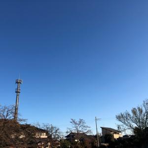 今日も元気に(12/5)