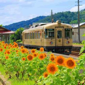 向日葵の咲く駅