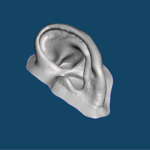 3D Printed Mold for ear prosthesis