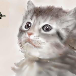 動物画 「癒しの子猫」15