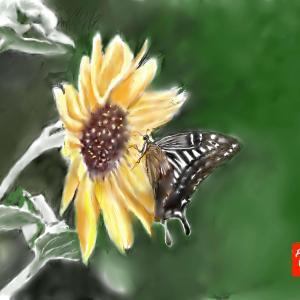 昆虫画 「ひまわりに黄アゲハ」