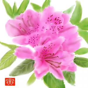 春の花 「ツツジ」