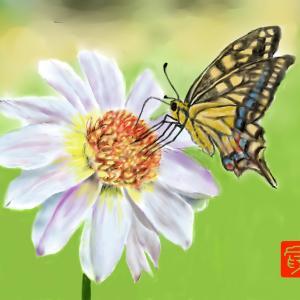 昆虫画 「ナミアゲハに魅了されて」2