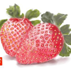 果物 「イチゴ」