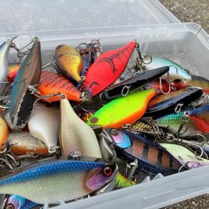 新型コロナウイルスが釣り業界にもたらす影響