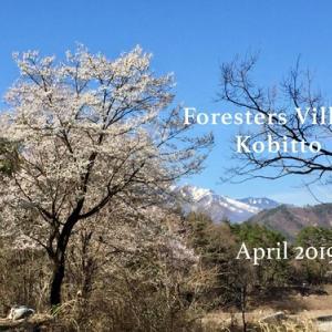 春キャン△初めてのForesters Village Kobittoへ出撃!