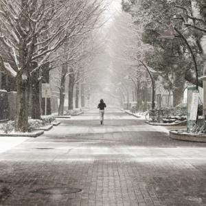「2月の風」