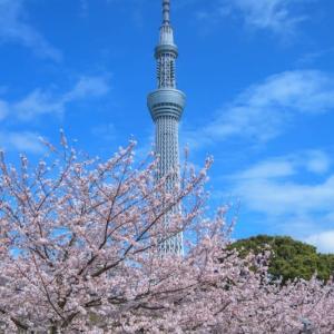 「4月の風」
