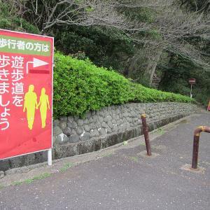 山口県の旅 3