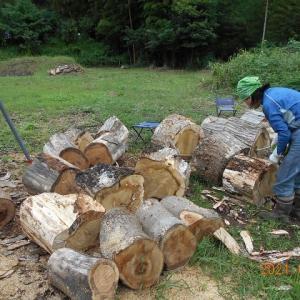 妻とふたりで薪を作っている