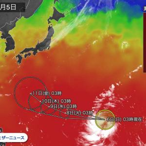 台風19号が発生、猛烈な勢力/サンマ・イカ・イルカ