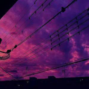 purple 雲/謎の発光現象「スティーブ」/人工降雨技術と気象兵器