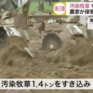 とうとう放射能汚染牧草を、農地にすき込む処理が開始!/日米FTA