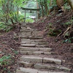 精霊いっぱいのパワースポット!!! 名草厳島神社