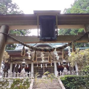 玉置神社で神の使いに会った!! 天河・玉置神社ツアーその2