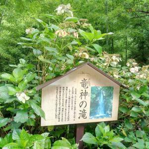 檜原村の九頭龍神社に行ってきました!