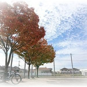 191113 South OSAKA Lunch RIDE 結局、食欲の秋なのか・・・