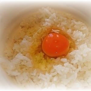 【2020年10月】 大阪/住之江区 『玉飯』 大盛玉飯 味噌汁付