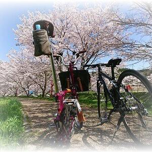 2021-03-31 Family Potter. 宇陀の桜に癒される・・・