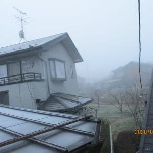 寒い朝でした。
