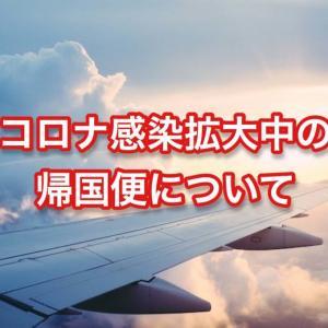 帰国便の購入について気をつけたい3つのこと【現在海外にいる人向け】