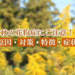 【福山市当番医2021年9月20日(月)|休日診療医療機関】