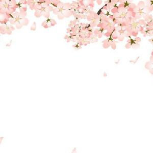 桜吹雪が舞うように…私の気持ちも軽くなっている🌸
