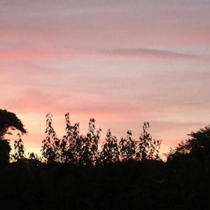 穏やかな朝焼け💕40分散歩
